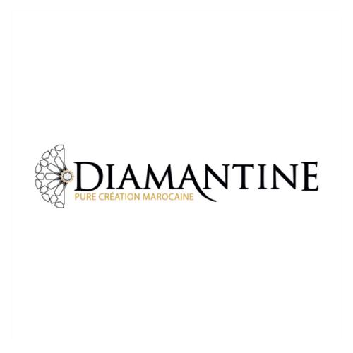 web strategy_web design_b2b training_casablanca_maroc_diamantine